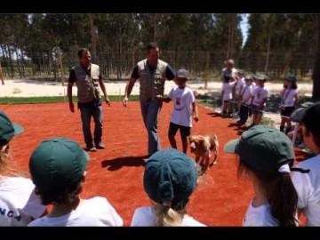 Jorge Piçarra - Acção de Formação 1º Ciclo St. Peter's School