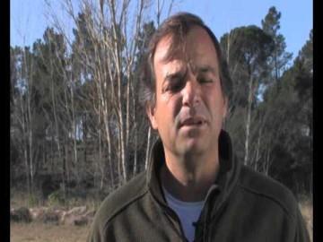 Jorge Piçarra - Conceitos sobre um cão de prova